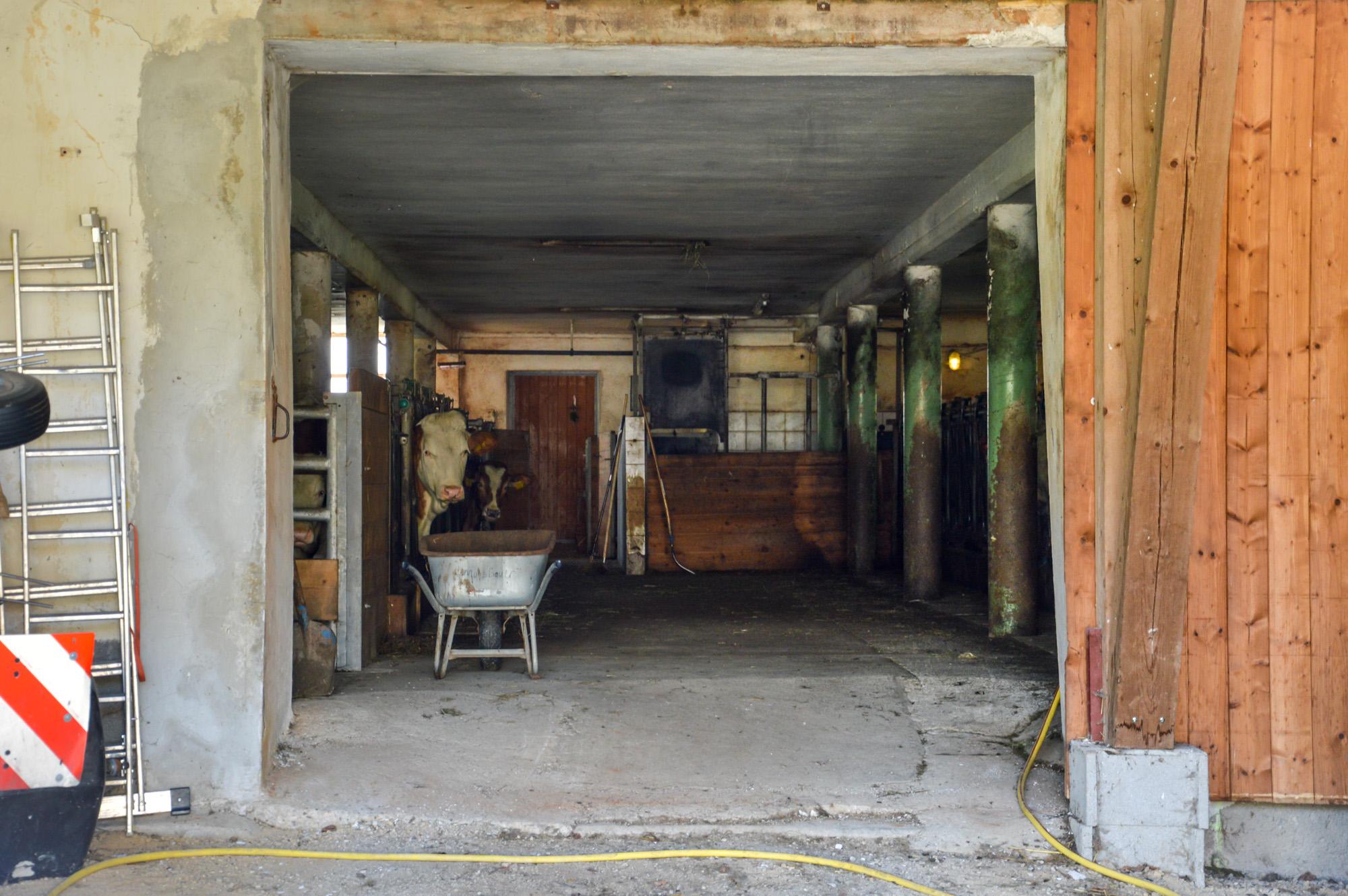 Familie Mandl-Moosbauer | Urlaub am Bauernhof in Göstling-Hochkar